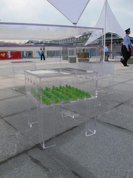 FurniBloom, мебель-клумба для украшения интерьера