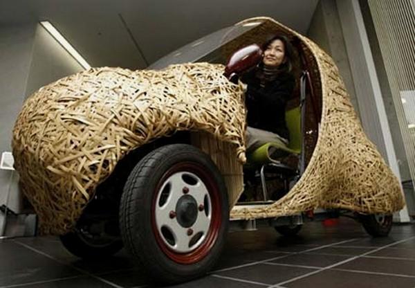 Экологически чистый бамбуковый электромобиль Bamgoo
