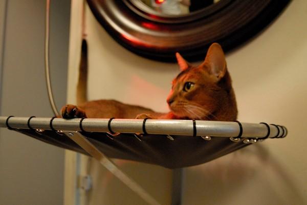 Hammock Cat Beds, спальное место для кошки