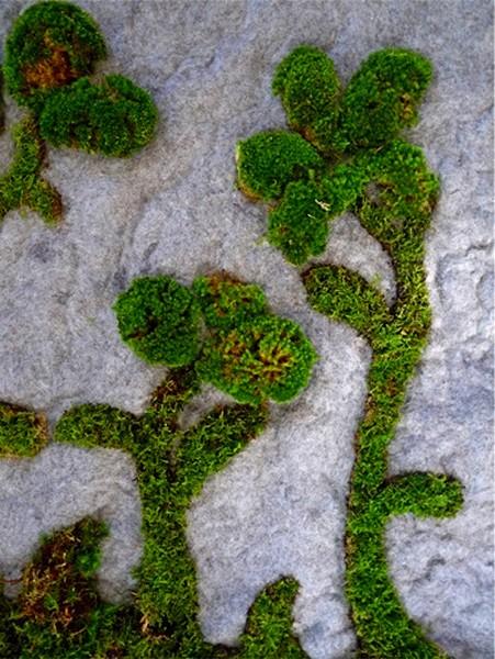 Зеленые узоры из мха на коврике GardenRug от компании Piadesign