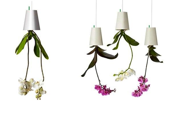 Sky Planter, цветочные горшки для растений, которые висят вниз головой