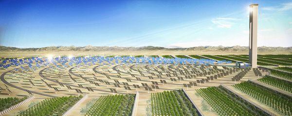 Sahara Forest Project: как озеленить Сахару