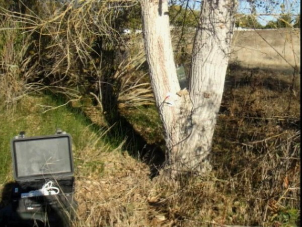Spray-On Antenna Kit: флакончик аэрозоля, улучшающего сигнал мобильника