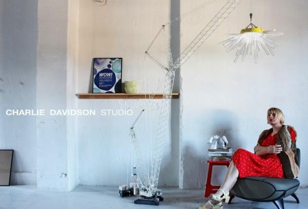 Дизайнерский светильник Crane Light от Charlie Davidson