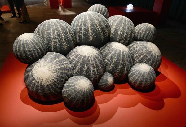 Дизайнерские кактусы для от Maurizio Galante