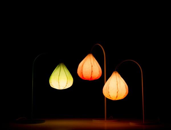 Bloom lamp. Романтический светильник в бутоне