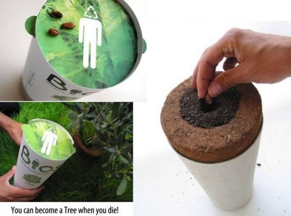 После смерти ты станешь растением