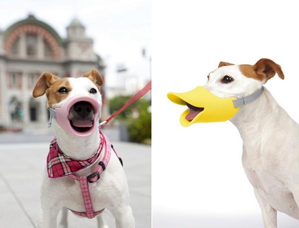 Quack Muzzle, смешной намордник в виде утиного клюва от компании OPPO