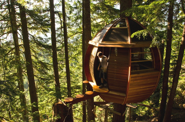 Экологичный дом на дереве HemLoft