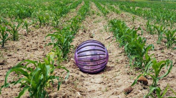 Rosphere – робот-хомячок в помощь сельскому хозяйству