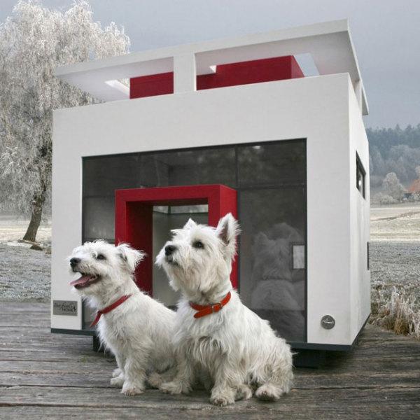 Собачья будка в стиле hi-tech