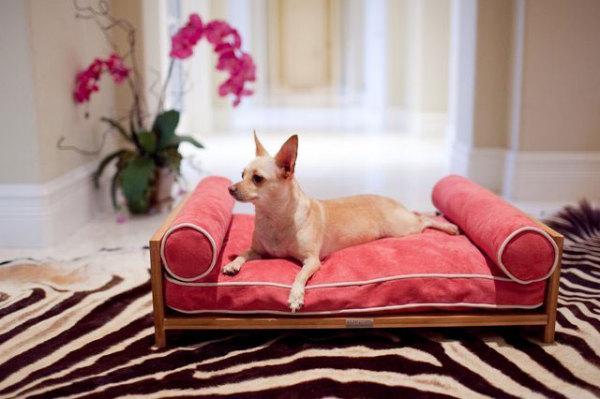 лежанка для собак