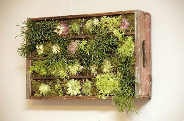 деревянные ящики в роли кадки для цветов