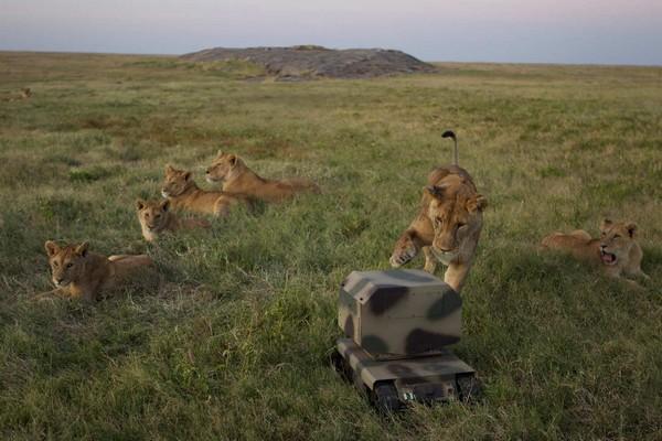 Роботы-фотографы для National Geographic