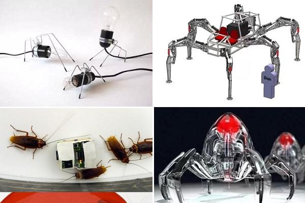 Полезные для человека роботы-жуки