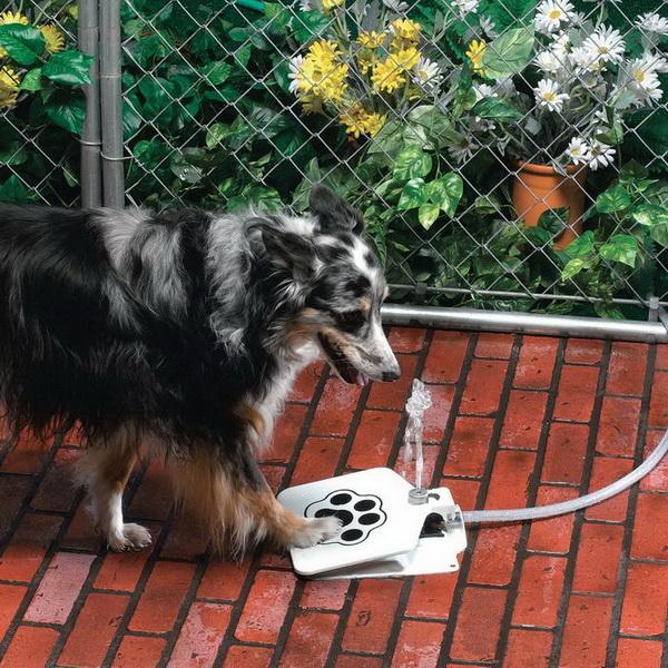 собачья поилка API Doggie Fountain F-1