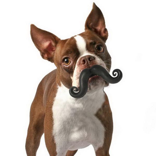 мячик в форме усов