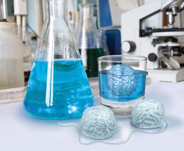 Лед в форме мозгов
