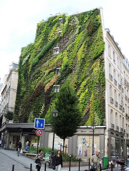 Потрясающий вертикальный сад, украшающий здание в Париже