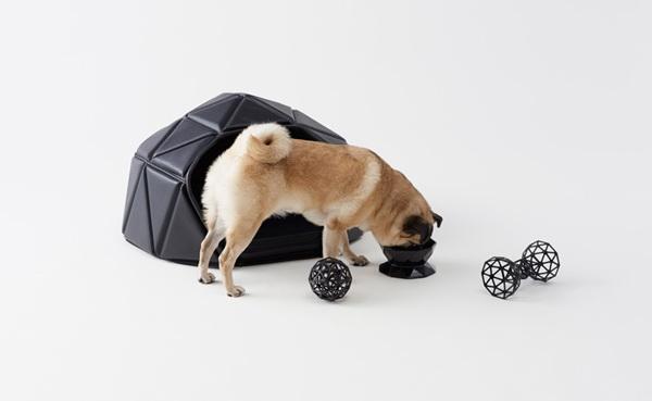 Орел и решка: коллекция аксессуаров для собак от компании Nendo