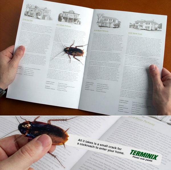 таракан в роли закладки для книг