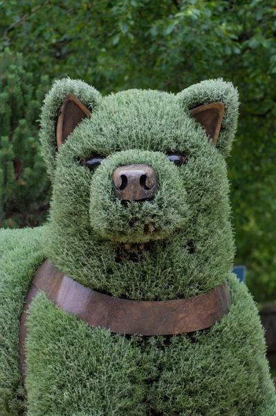 Вечнозеленые скульптуры на Mosaicultures Internationales