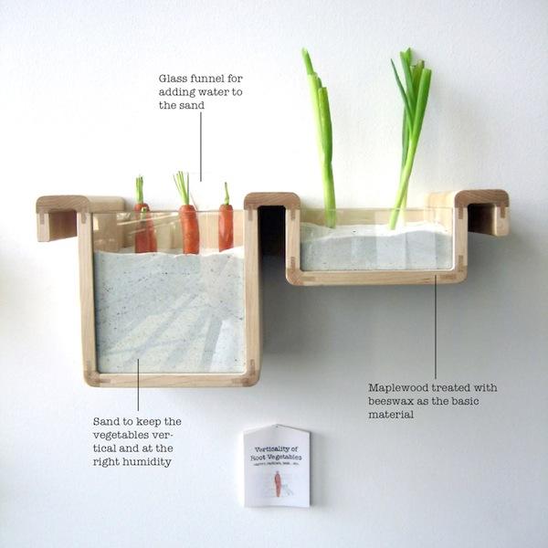 грамотное хранение сельдерея и моркови