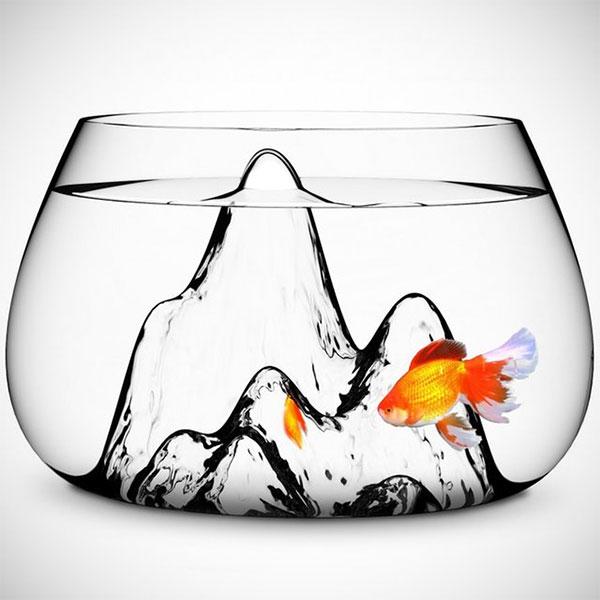 интересный стеклянный аквариум