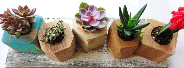 деревянные цветочные горшки