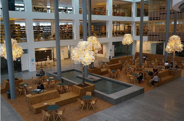 Копенгагенский университет превратился в сад