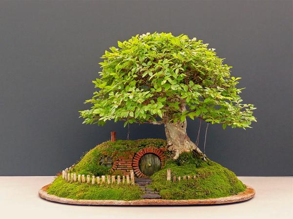 дерево-бонсай с миниатюрным домиком