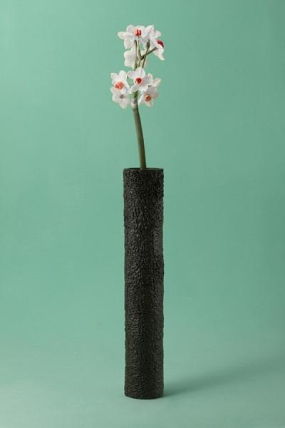 Оригинальная ваза, созданная из авокадо