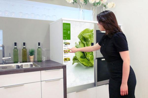 Холодильник In My Fridge
