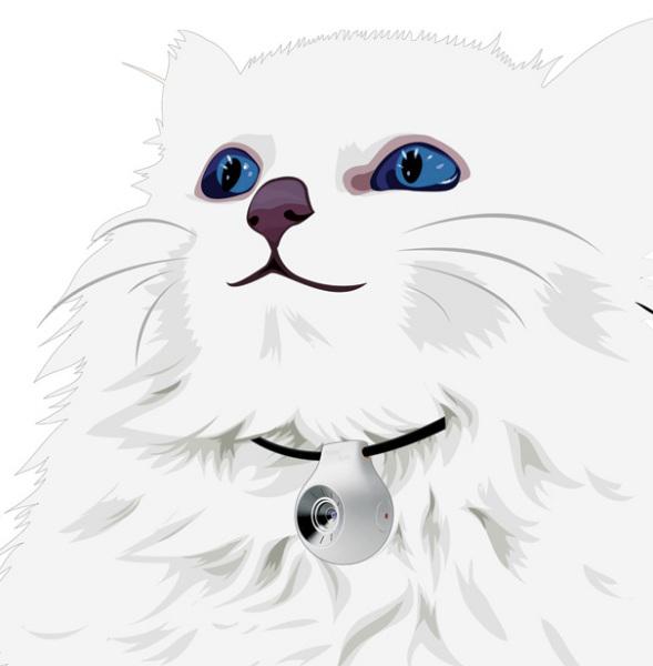 Концепт Pet Vision
