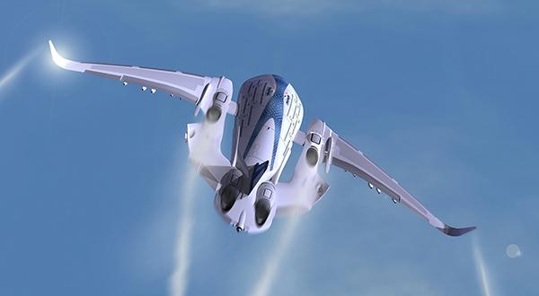 Sky Whale в полете