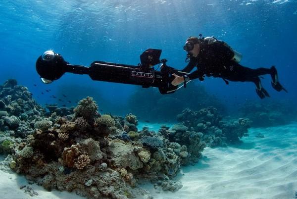 Подводные исследования от Google Street View. Источник фото: Google Maps