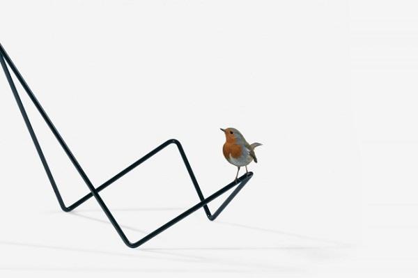 Птица на подставке для книг