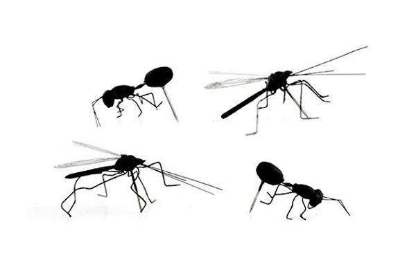 Кнопки в форме комаров и муравьев