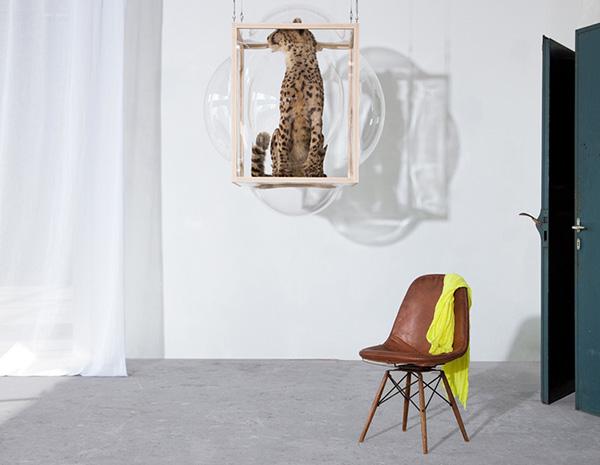 Стеклянные шкафы от Thier&VanDaalen.