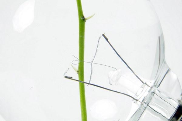 Электроды поддерживают стебель цветка.