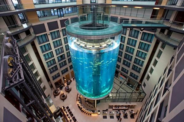 AquaDom – лифт внутри аквариума. Источник фото: zoochat.com