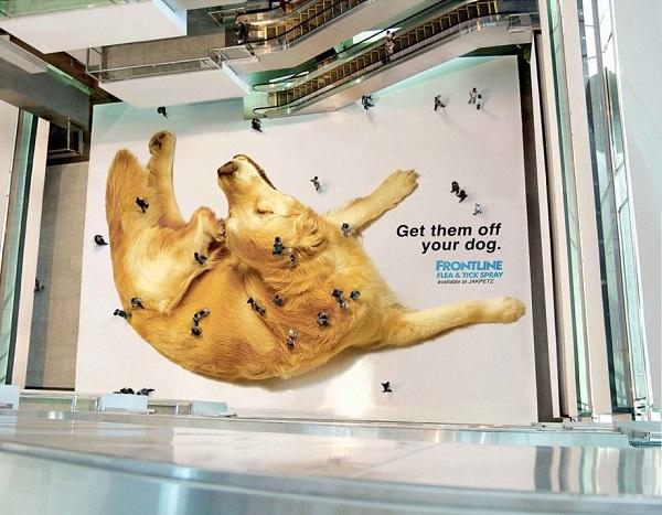 Реклама средства от блох.