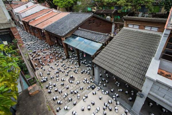 Панды на улицах Гонконга.
