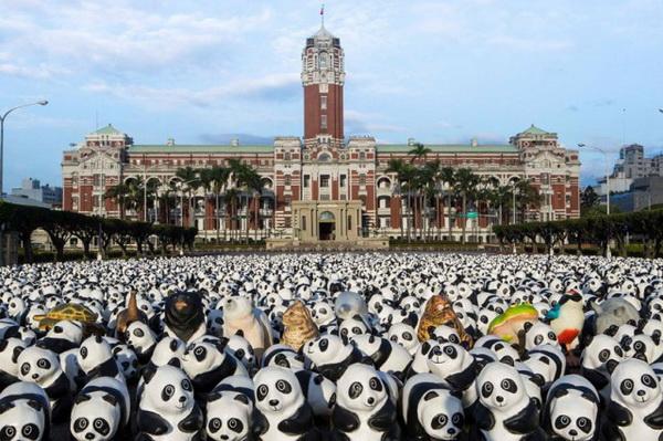 Панды от Paulo Grangeon.