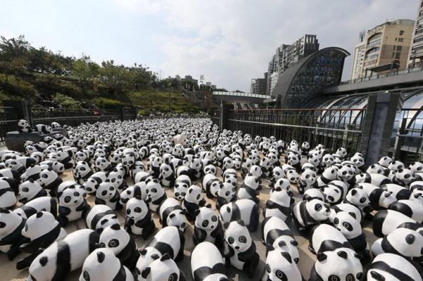 Панды на улицах Гонконга от Paulo Grangeon.