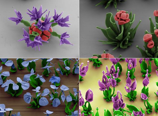 Кристаллические «цветы».