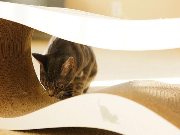 Экологически чистые лежаки для кошек.