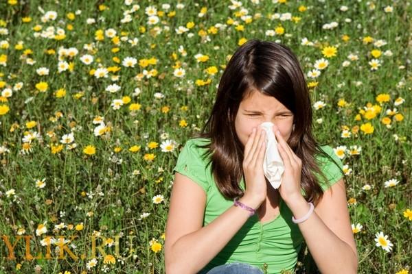 Вакцинация при помощи цветочной пыльцы