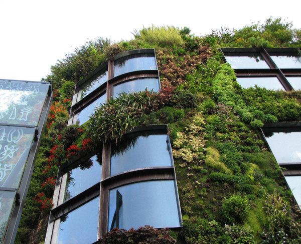 Стена в качестве вертикального газона.