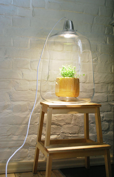 Светильник, в который моно поместить растение.
